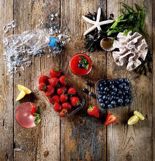 Recycled Ocean Plastics